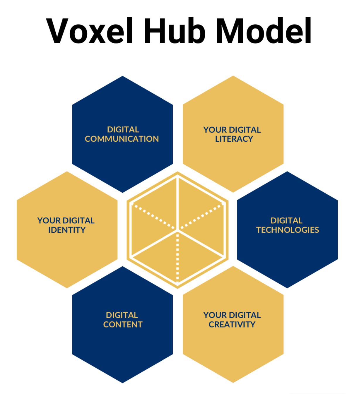 Voxel Hub model