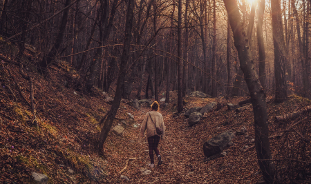 Quick tips – mindful walks