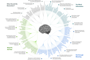 512px-The_Cognitive_Bias_Codex_-_180_biases_designed_by_John_Manoogian_III_jm3